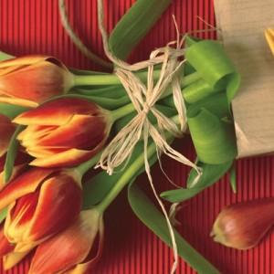 Идеи подарка воспитателю на 8 марта