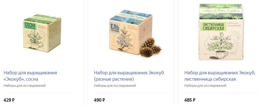 Экокуб - набор для выращивания хвойного дерева