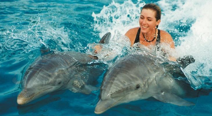 Плаванье с дельфинами